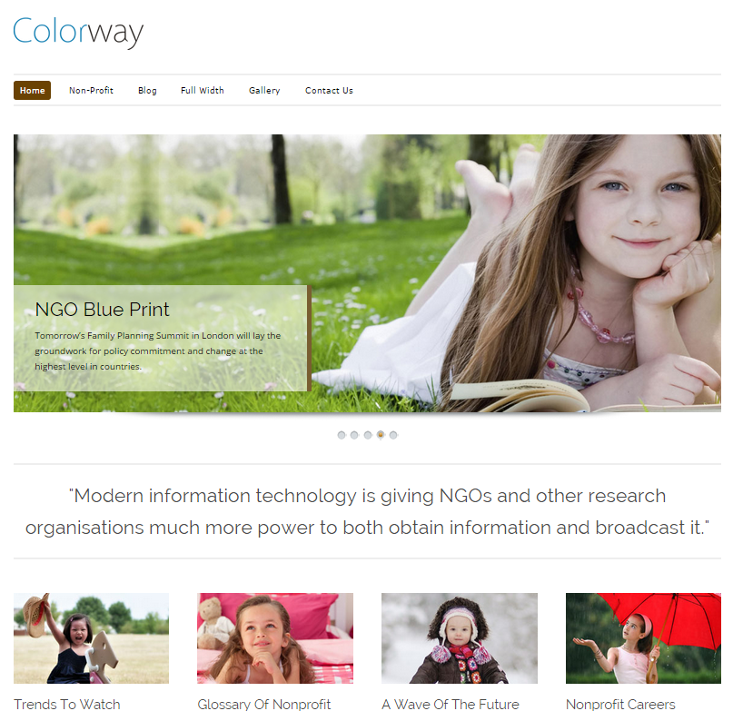 colorway-wordpress-theme-seo