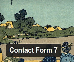 contact 7 - WP form