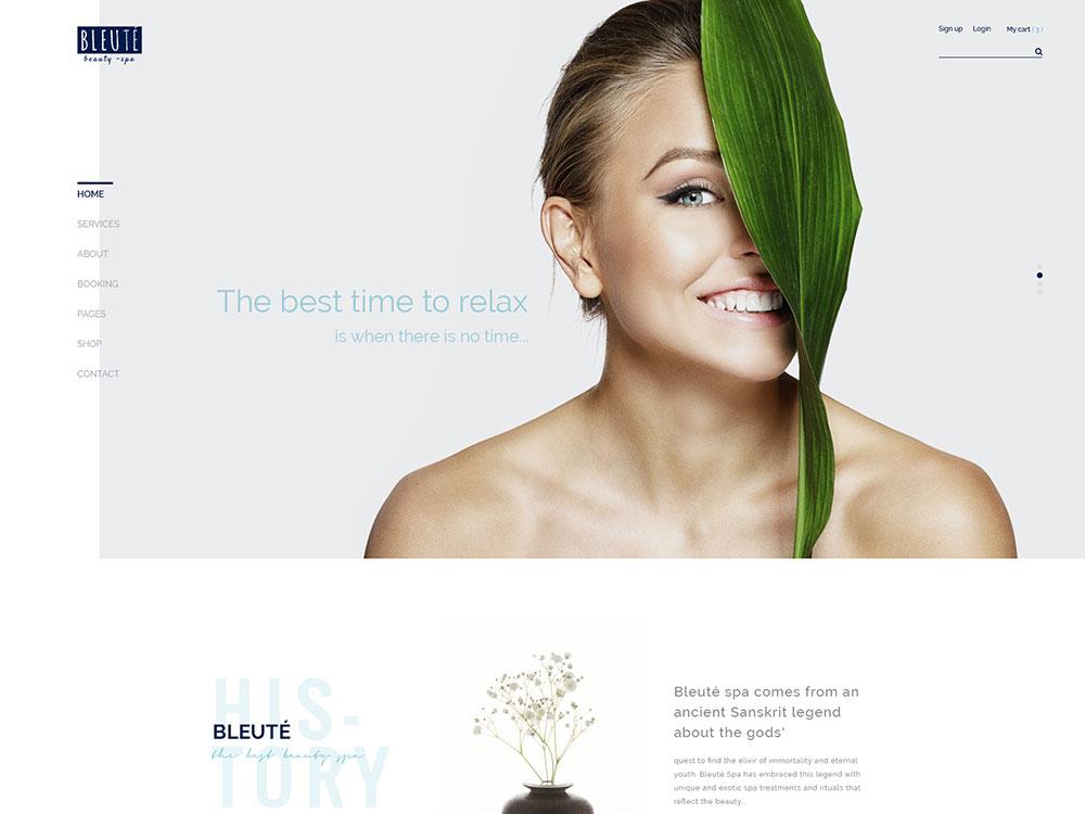 bleute-wp-theme