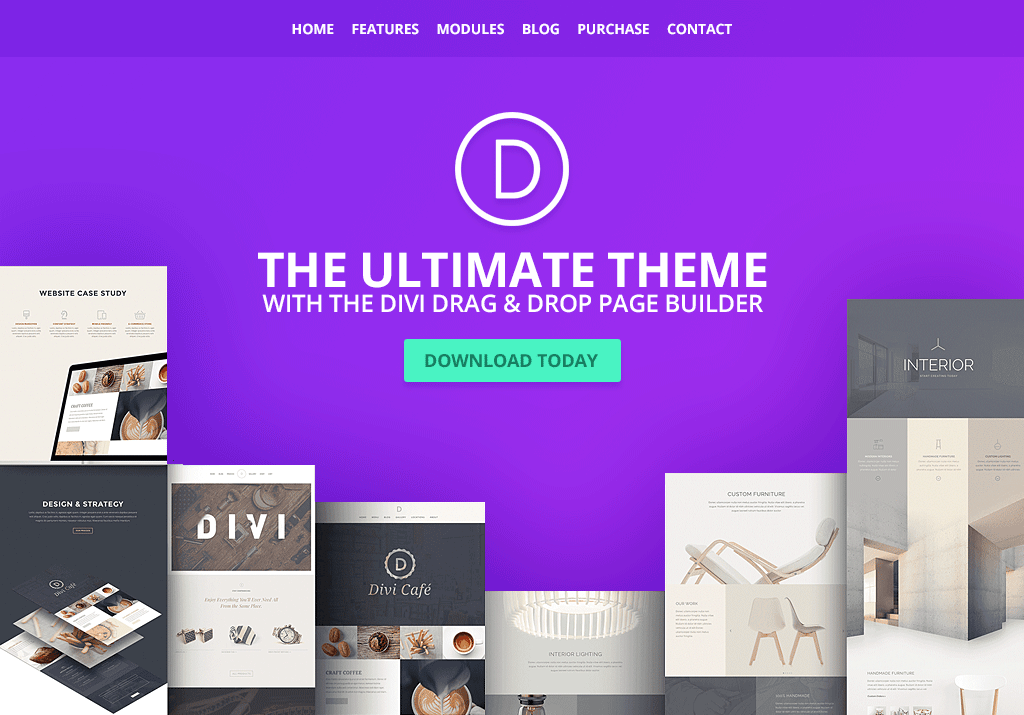 divi-wp-theme