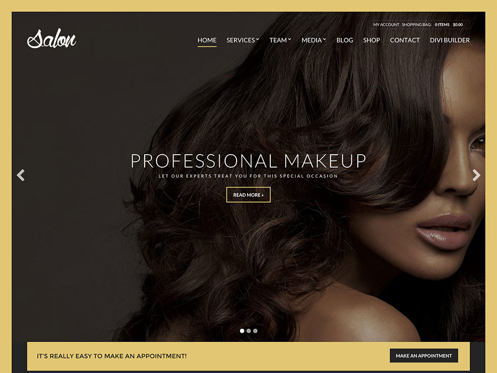 salon-wptheme