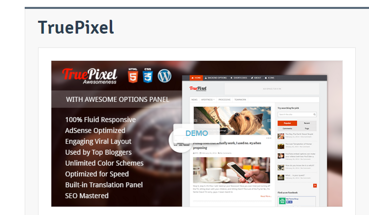 truepixel-wp-theme