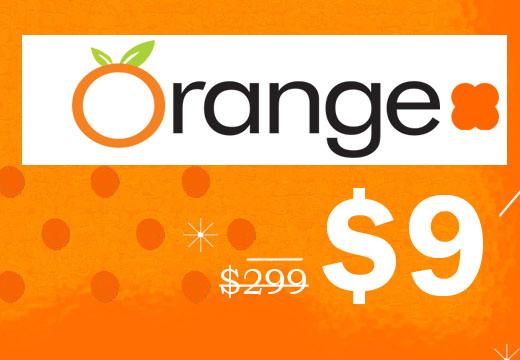 DM_Orange_Final-1.jpg