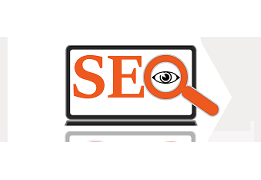 DealMirror Special SEO Combo Offer