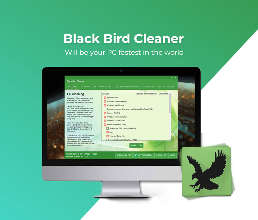 Black Bird Cleaner