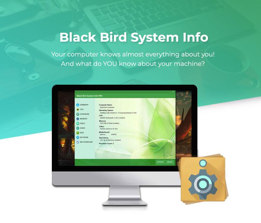 Black Bird System